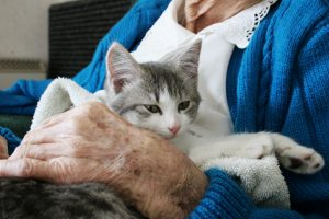 Elderly and pets: Essential to their lives